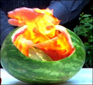 7607-watermelon.jpg