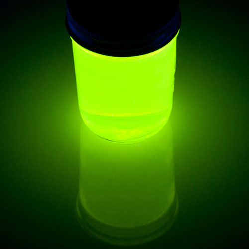 Sick Science Summer Camp Make Your Own Firefly Glow