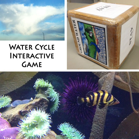Water Cycle Game | Steve Spangler Science