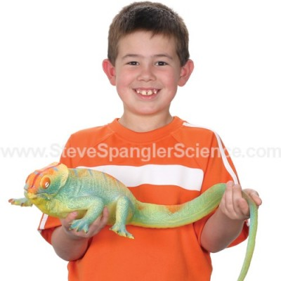 Top 10 Science Stocking Stuffers Under $10 | Giant Growing Lizard $4.99 | Steve Spangler Science