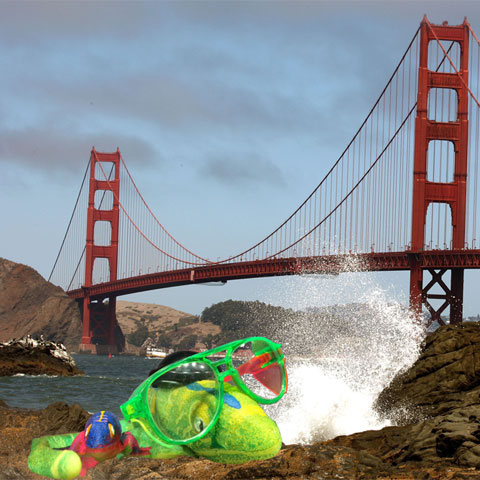 The Growing Lizards Visit the Golden Gate Bridge in San Francisco - Steve Spangler Science Selfies