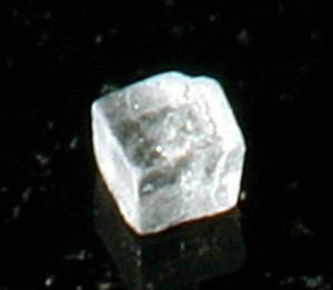 magnified grain of salt