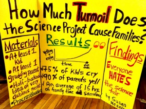 Please click the link and read Ms. Messina's article at the Huffington Post about how and why she created this poster!
