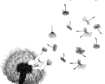 Don't deny your kids the privilege of making wishes on dandelion clocks.  It's more important than a green lawn.