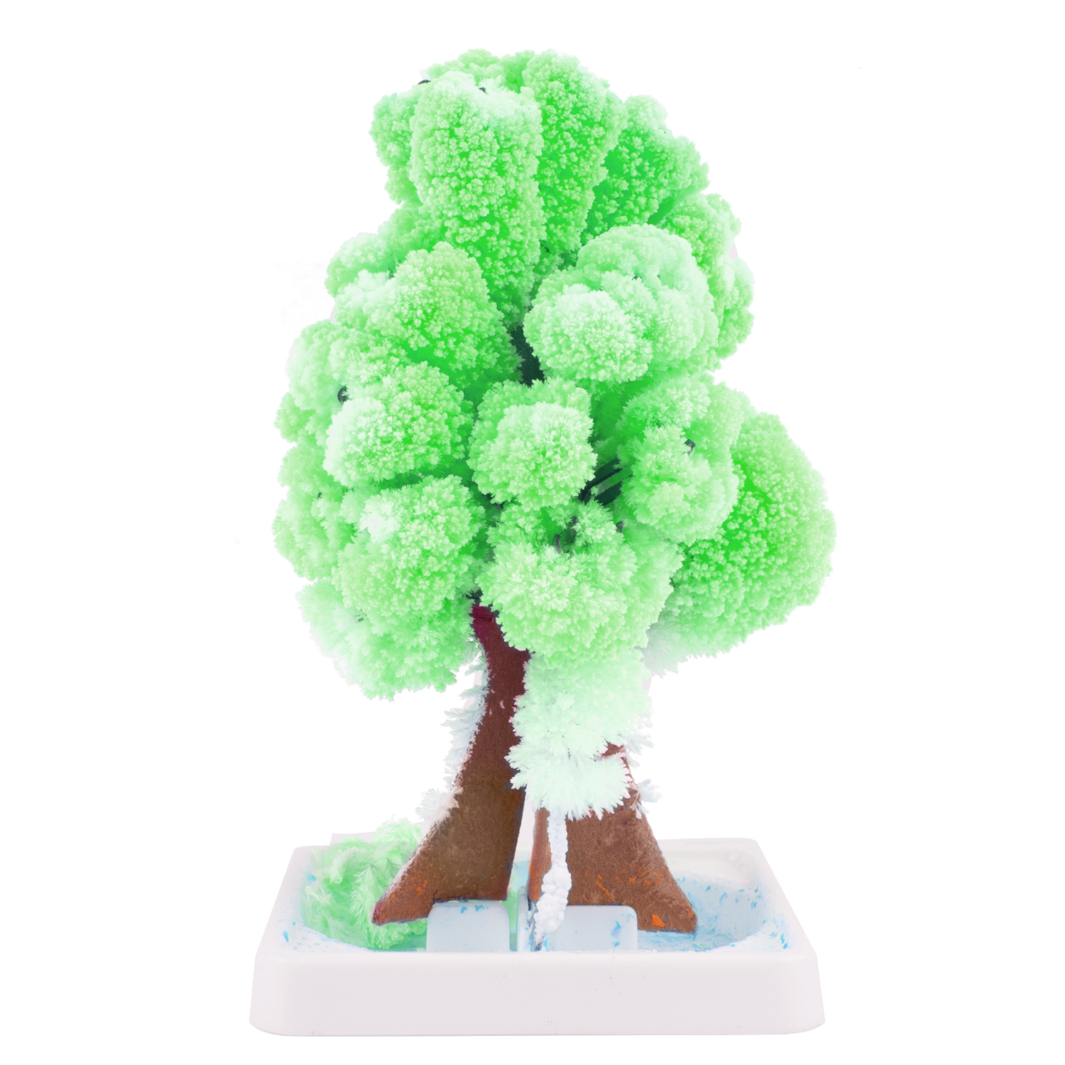 Magic Tree (5 Pack)