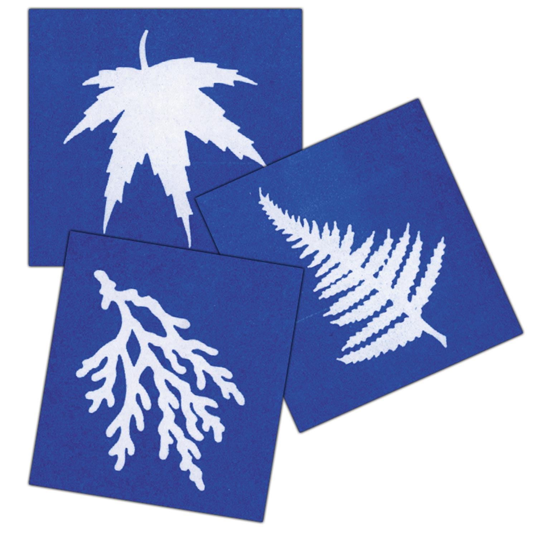30 Pack of Sun Sensitive Paper