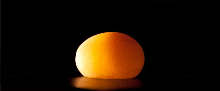 Naked Eggs | Experiments | Steve Spangler Science