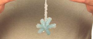 borax-crystal-snowflakes-10