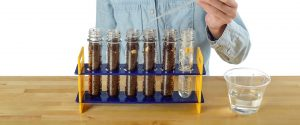 Growing Plants in a Test Tube - Step 9
