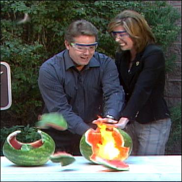 7-6-07-watermelon3.jpg