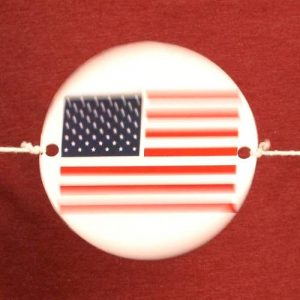 spinning-disk-illusion-20110629-12.jpg