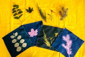 Nature Prints on Sun Sensitive Fabrics