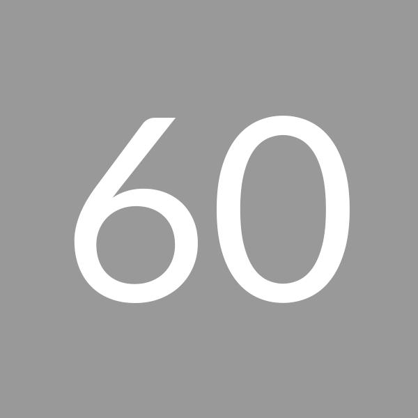 Quantity 60
