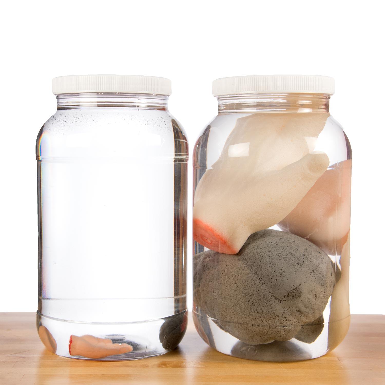 Growing Body Parts Jar