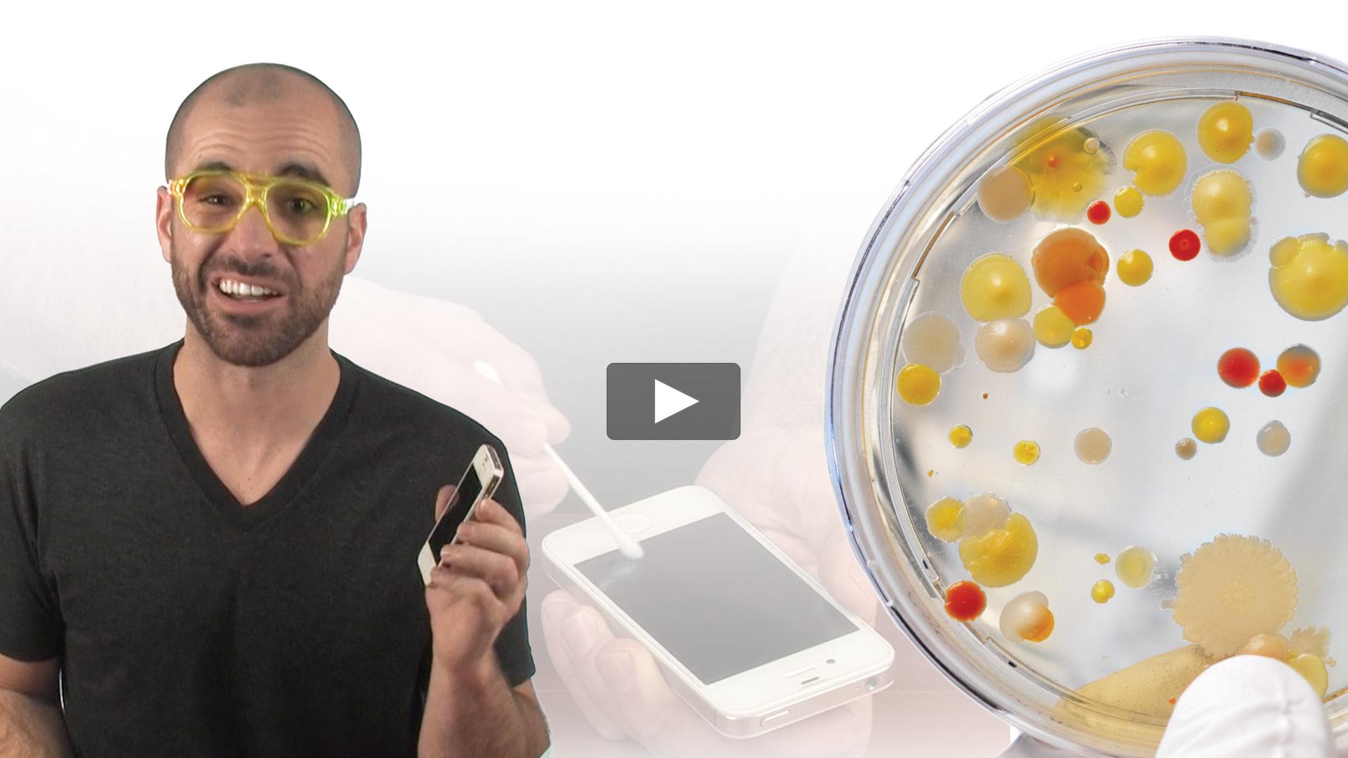 Growing Bacteria Kit Video