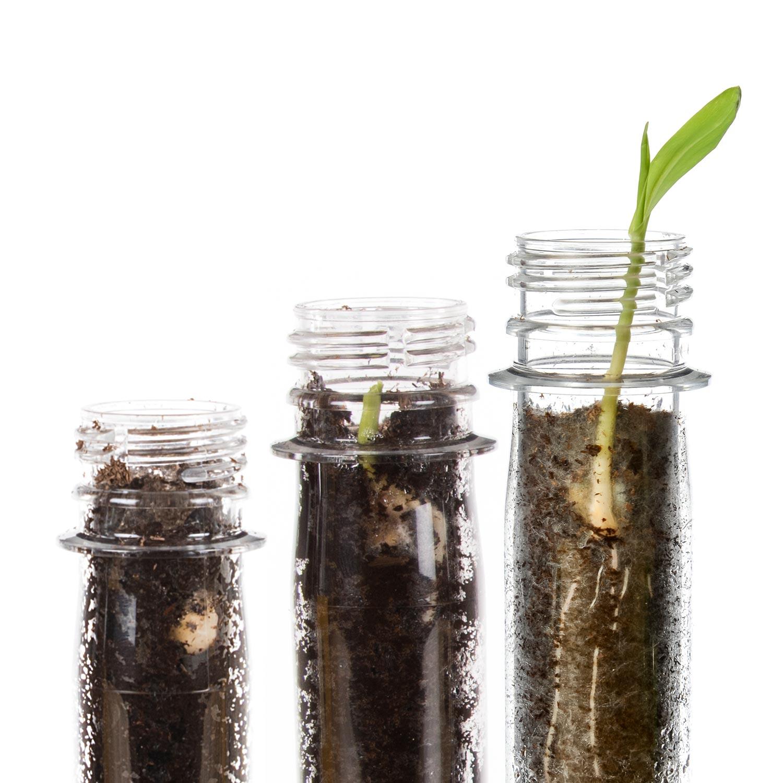 Diggin' Plants