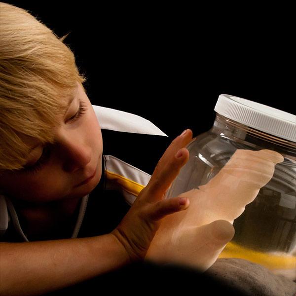 Growing Body Parts Jar – Half Gallon